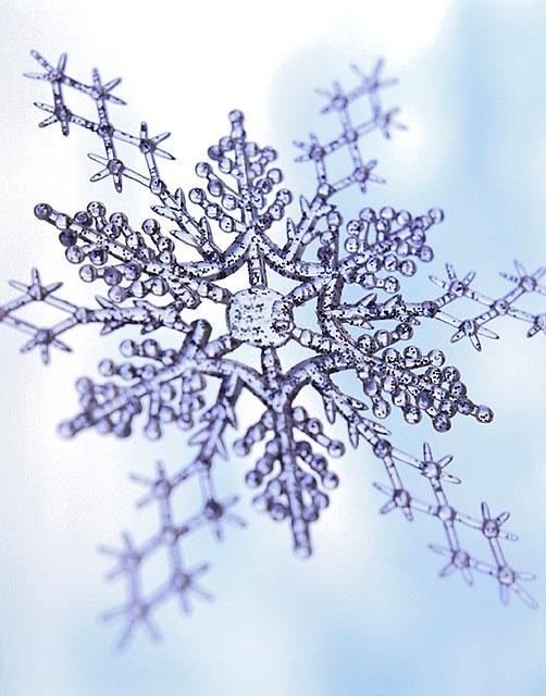 Silvery snowflake